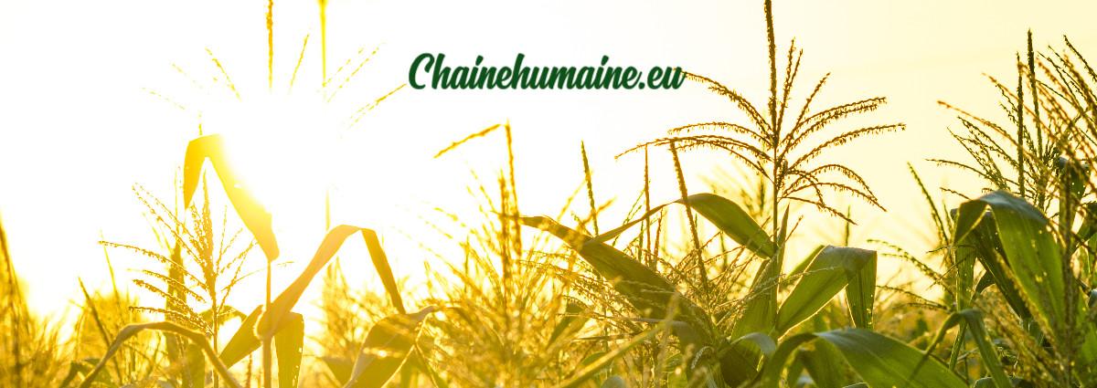 chainehumaine.eu
